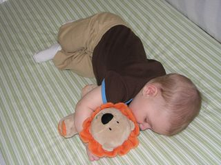 Nathan 6 months sleeping lion