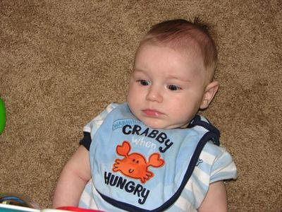 Nathan month 5 crabby bib