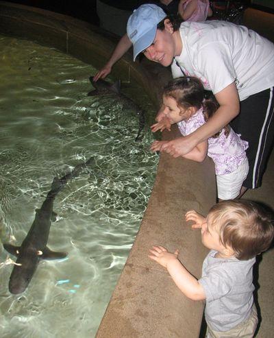 Momma kids sharks 5-10