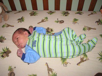 Nathan Dino Crossing sleeper